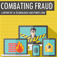 Combatting Fraud E-Book