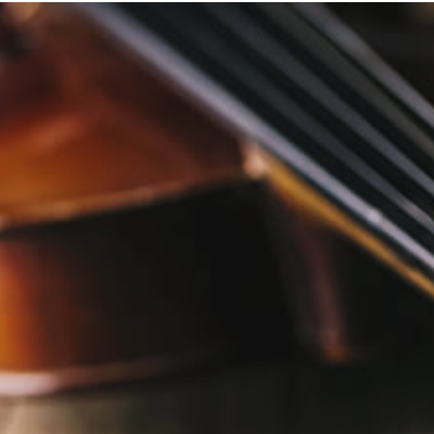 Musical Stringed Instruments